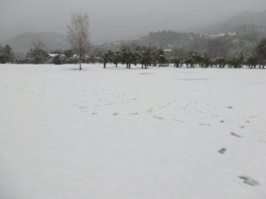 2012_Garlenda_Under_Snow_02